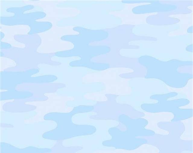 Baby Blue Camouflage Fleece Fabric