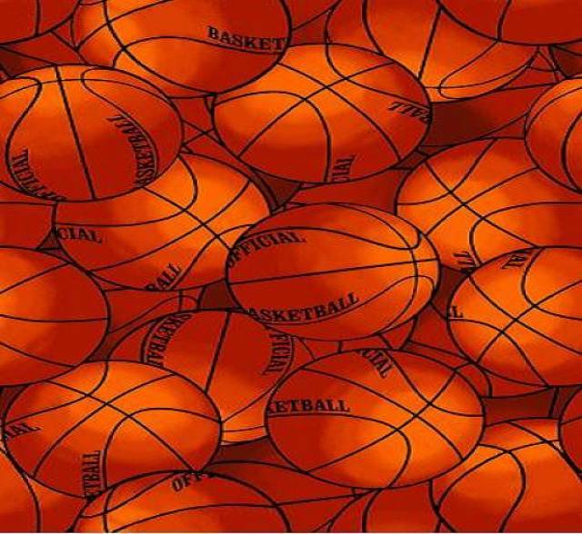 Packed Basketballs Fleece