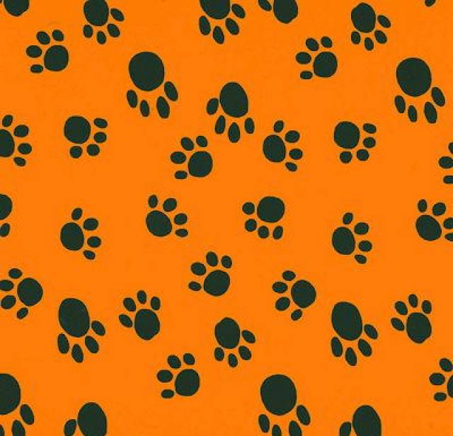 Paws Prints Orange Fleece