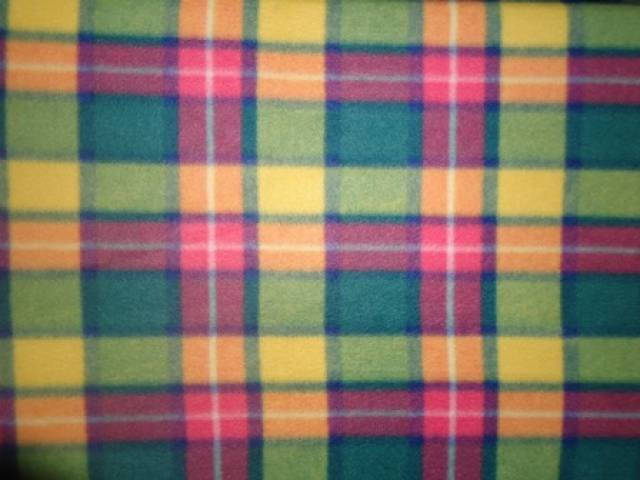 Bright Forest Plaid Fleece