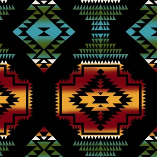 Windrunner Black Native American Fleece Fabric