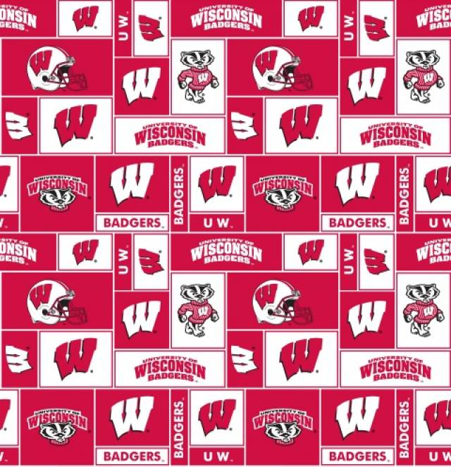 University of Wisconsin Badgers Fleece Fabric