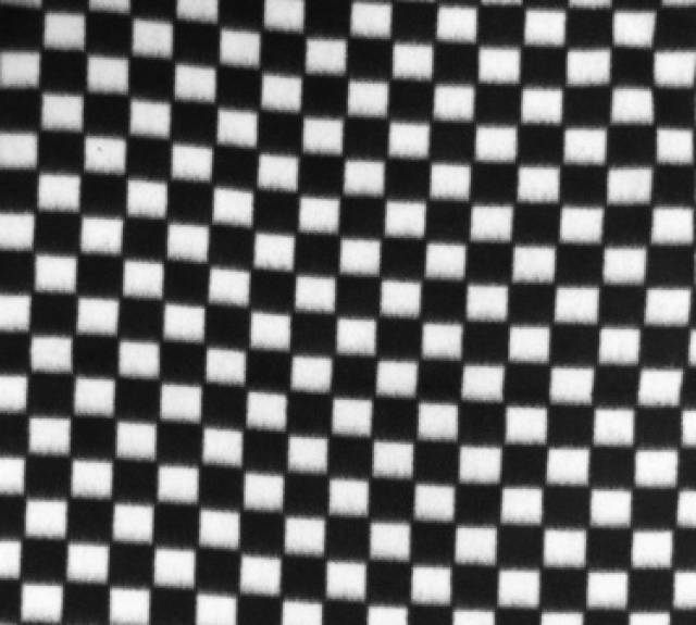 Black and White Checkers Fleece
