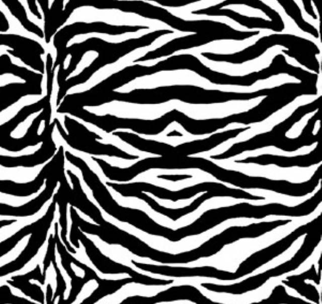 Zebras Stripes White & Black Fleece Fabric