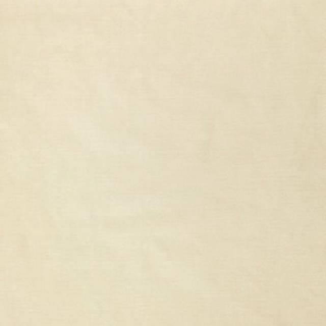 Ivory Polyester Solid Poplin