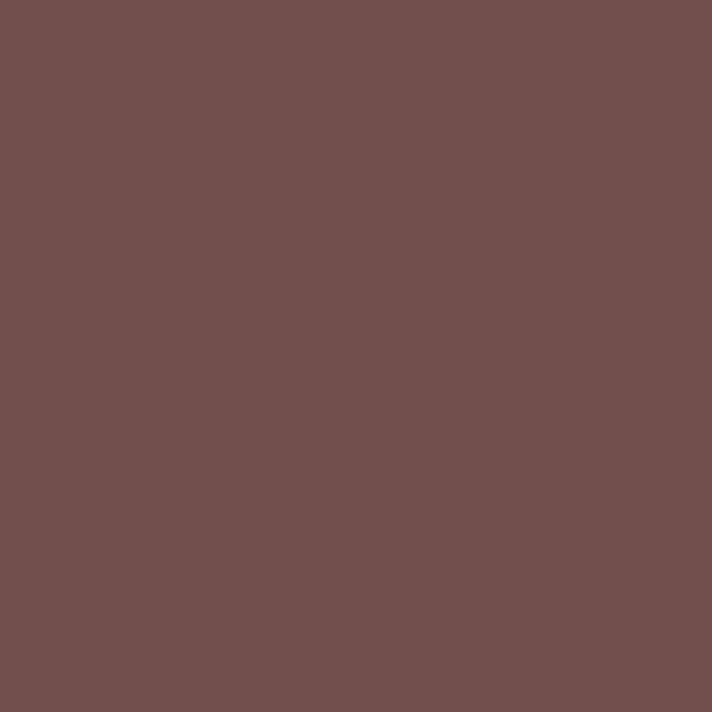 Brown Polyester Solid Poplin