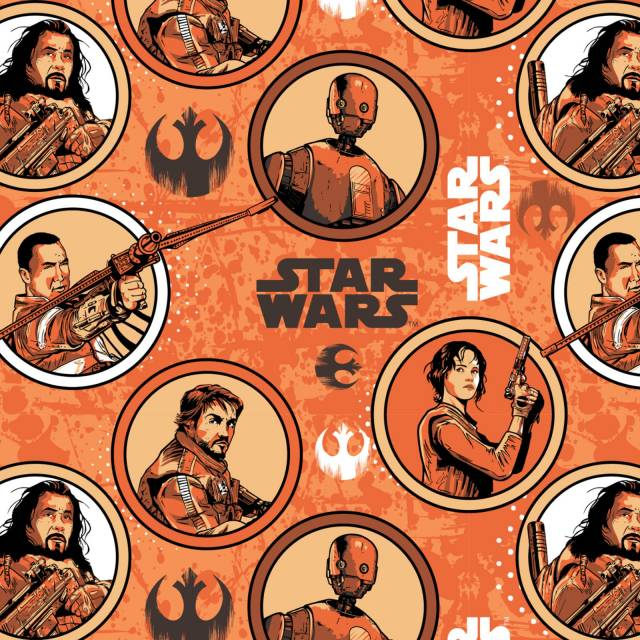 Star Wars Rouge Fleece Fabric