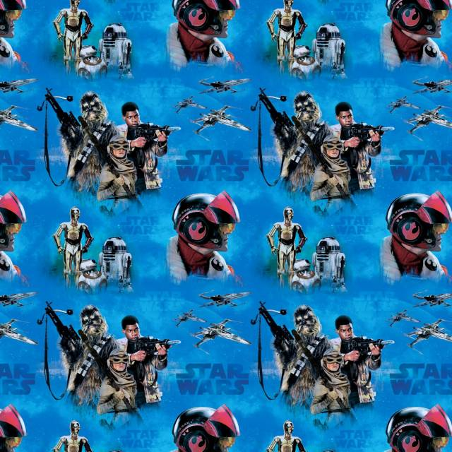 Star Wars Rogue One Immortals Fleece Fabric