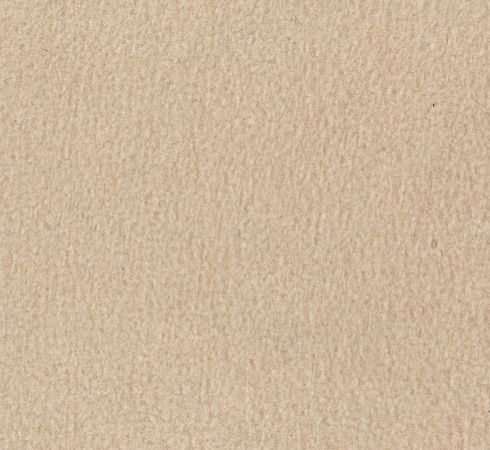 Taupe Solid Fleece Fabric
