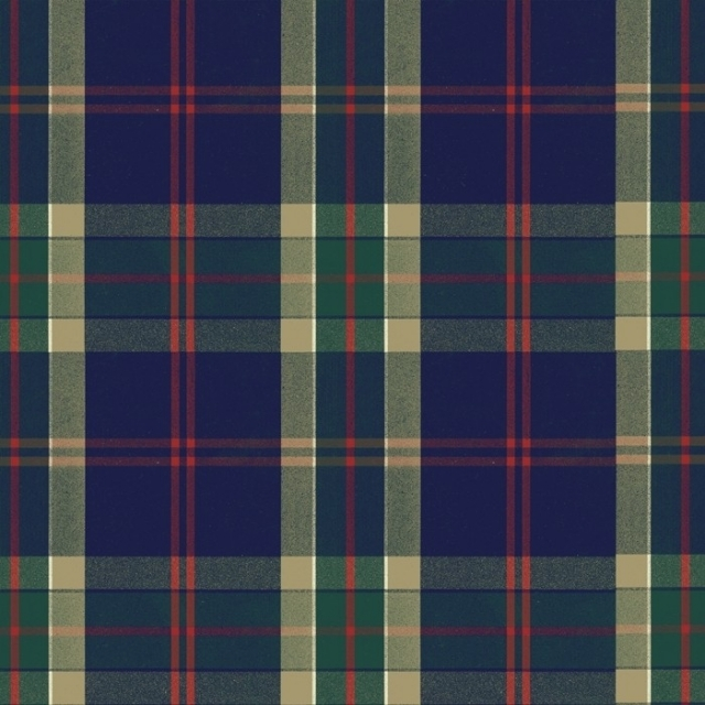 Green & Navy Plaid Fleece Fabric
